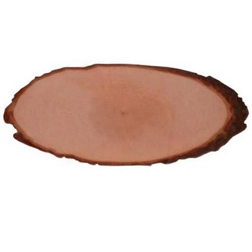 tree bark slice oval length 3033 cm 3033 cm x 15 cm x 1 cm